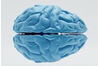 Brain2-200x135