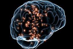 Neuroscience Leadership