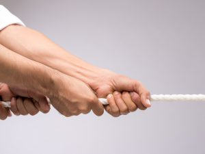 Leadership & Teambuilding